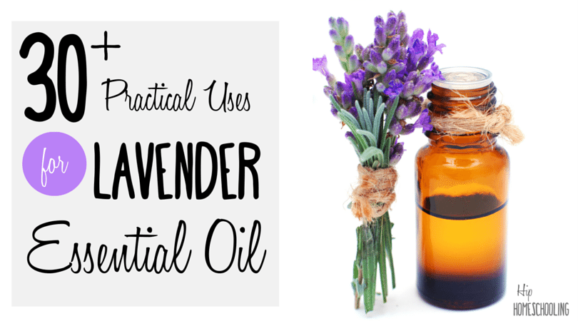 30+ Practical Uses for Lavender Essential Oil
