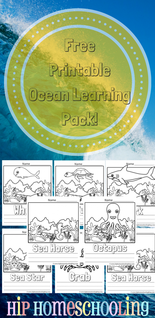 Ocean Coloring Pages and LA Free Printable Pack, plus some fun ocean unit study ideas to do with your kids if you are homeschooling! Check it out!