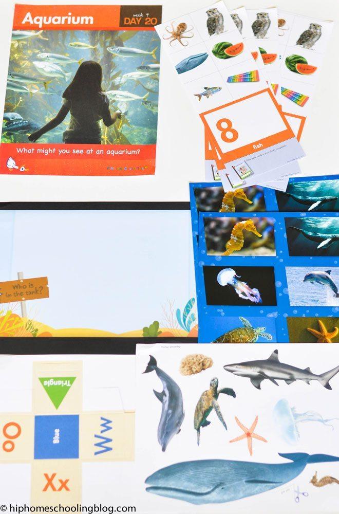 Ocean-Games-5