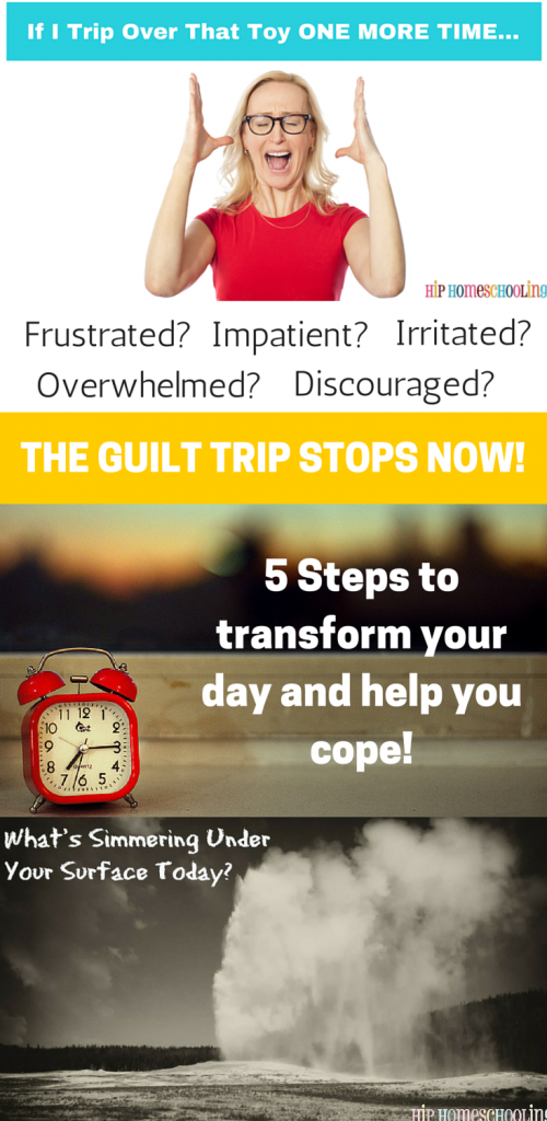Are you feeling frustrated, discouraged, irritated with your kids? Stop the guilt trip and come find out 5 steps to transform your day and help you cope!