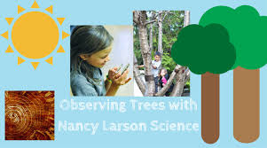 Observing Trees with Nancy Larson Science Curriculum