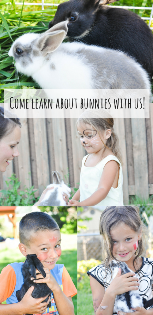 Come learn about bunnies with us!