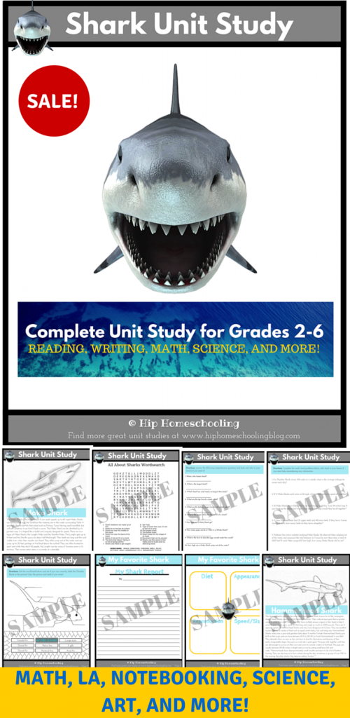 Shark Unit Study: Come learn about sharks, for sale for a limited time only!