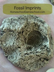 Make Your Own Fossil Imprints Favourite things Friday Featured Post