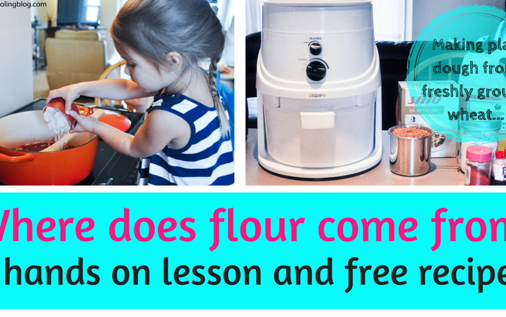 Making playdough from freshly ground wheat. A hands on lesson and free recipe!