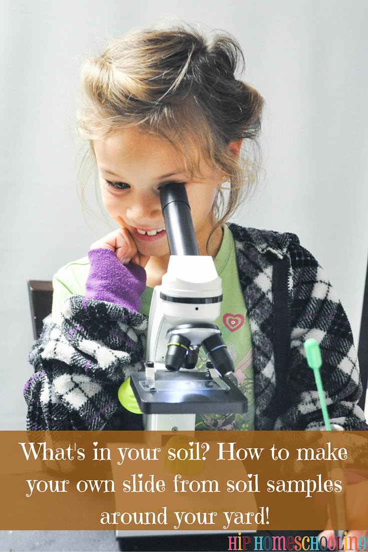 soil science experiments for kids