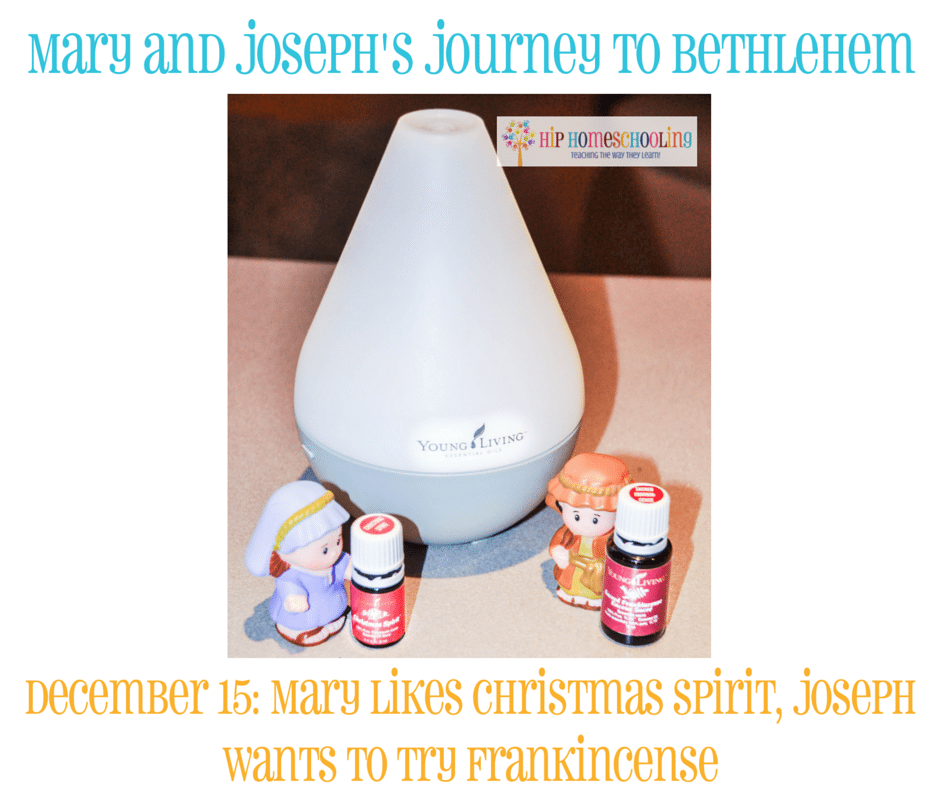 Elf on the Shelf Alternative- Journey to Bethlehem. Fun ideas for each day leading up to Christmas with pictures! December 15th
