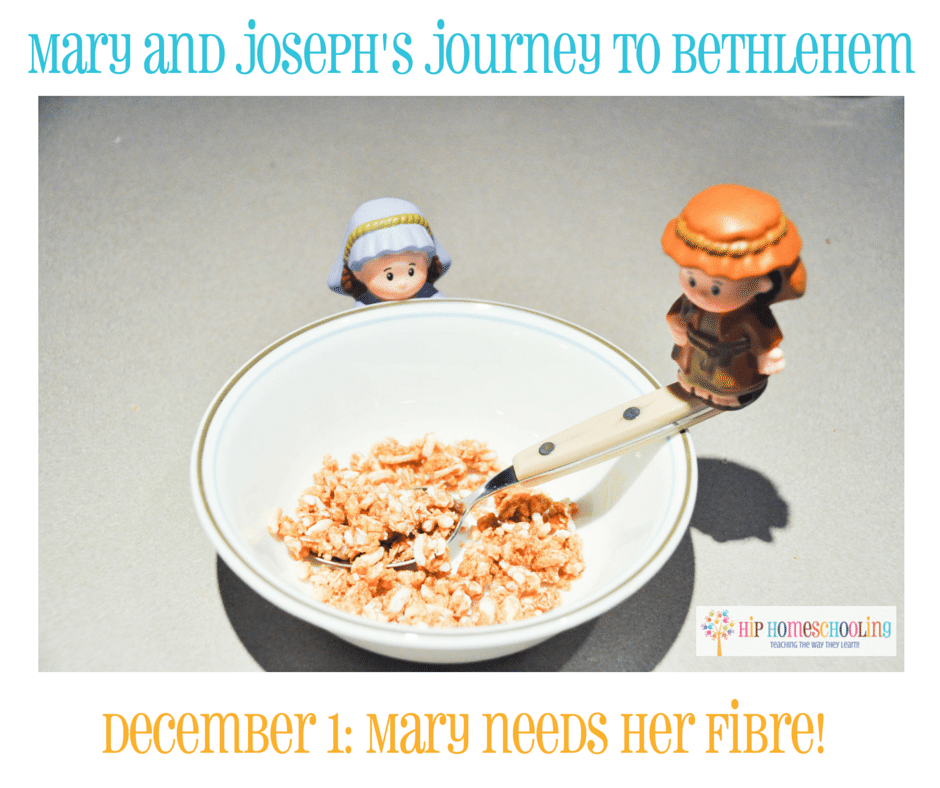 Elf on the Shelf Alternative- Journey to Bethlehem. Fun ideas for each day leading up to Christmas with pictures! December 1st