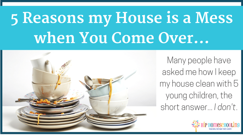 5 Reasons my House is a Mess when You Come Over