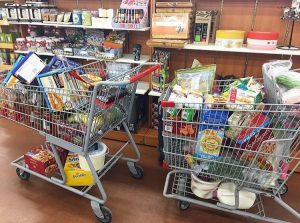 Grocery shopping trip with kids