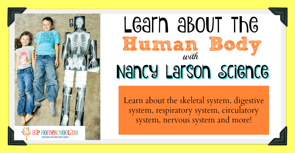 Learn about the Human Body with Us!