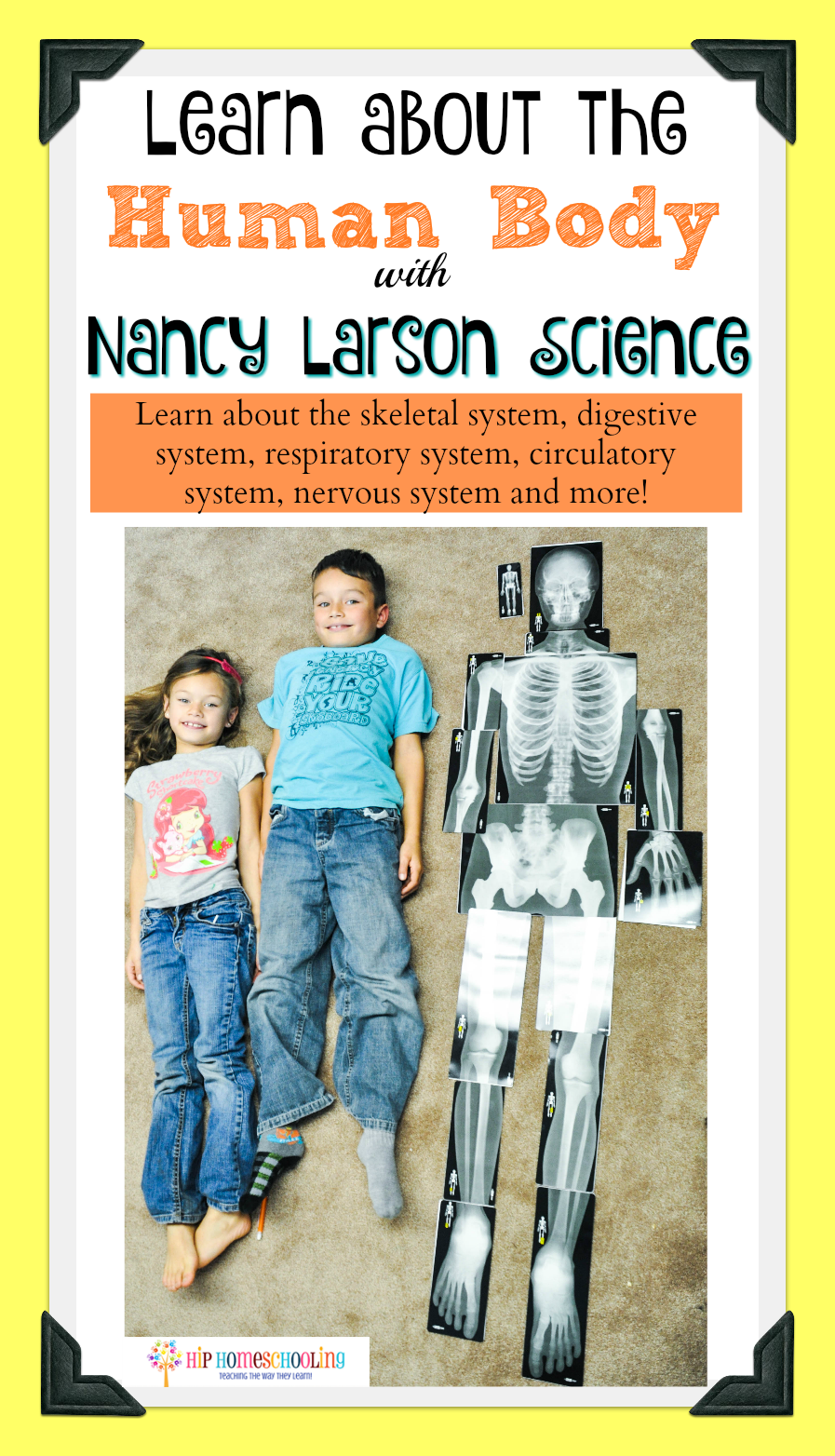 Learn about the human body with Nancy Larson Science