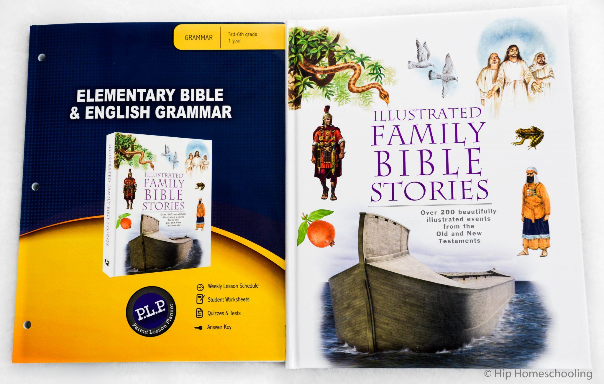 Elementary Bible Curriculum and Grammar Curriculum!