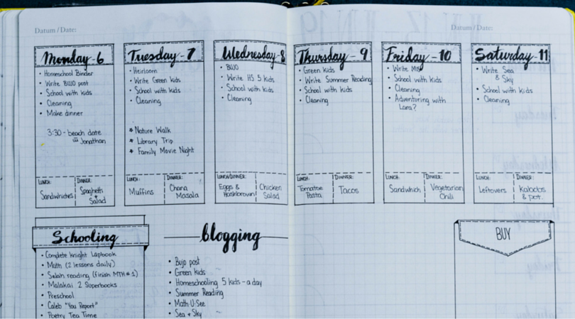Bullet Journal Layout Examples