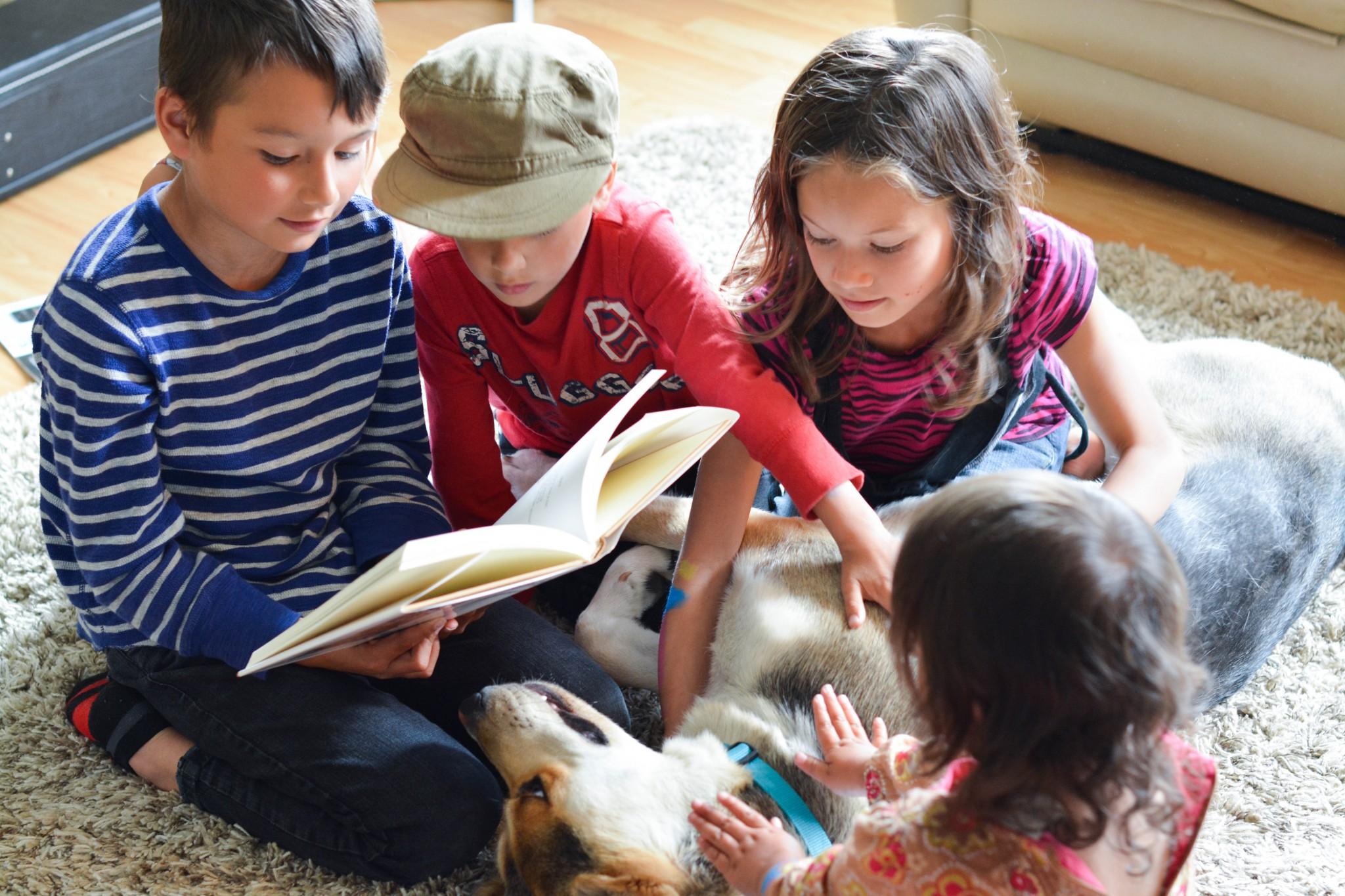 Teaching Writing through reading poetry