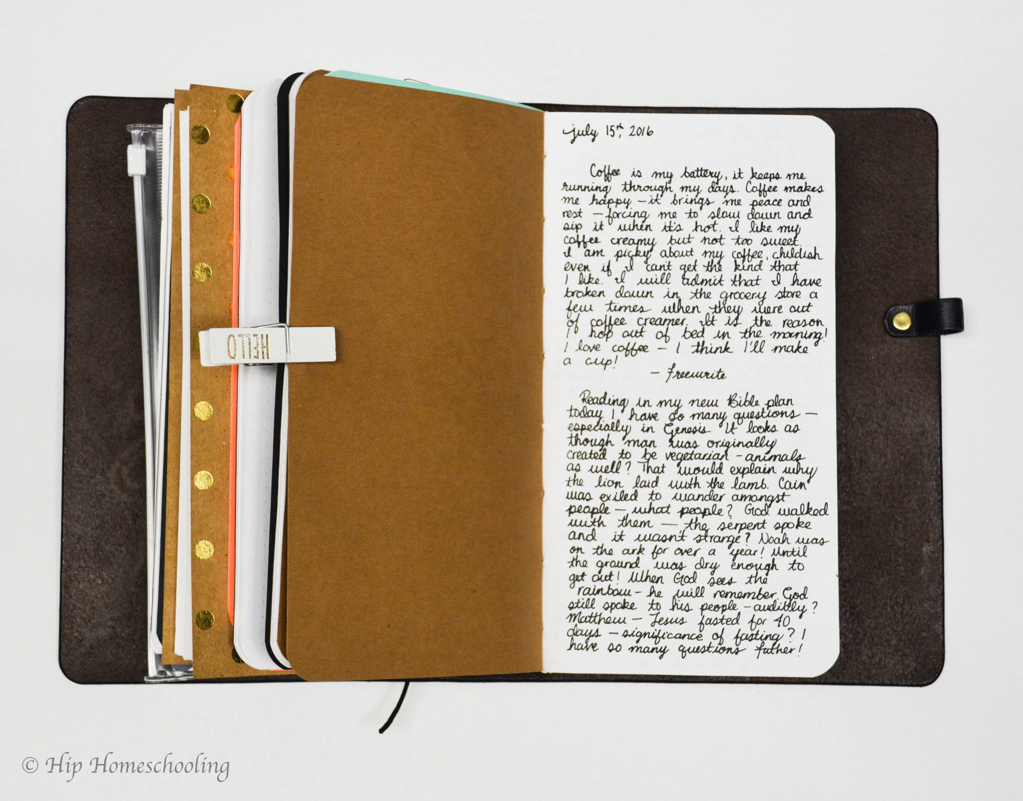 bullet journaling ideas: journaling insert