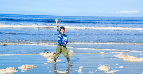 Bringing a Sense of Wonder into our Homeschool
