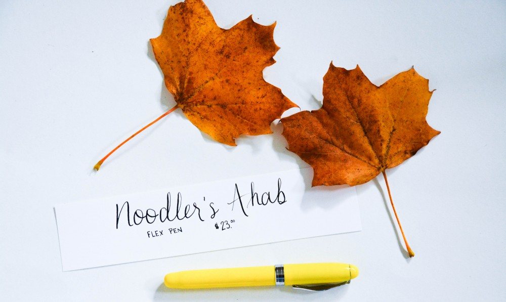 Writing with a Fountain Pen: Noodlers Ahab Flex