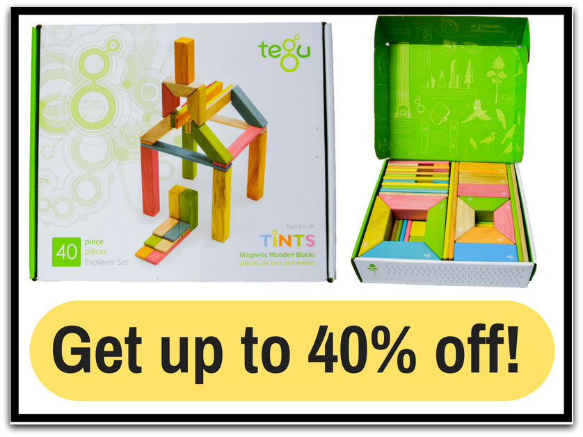 Hands on Learning with Tegu Blocks
