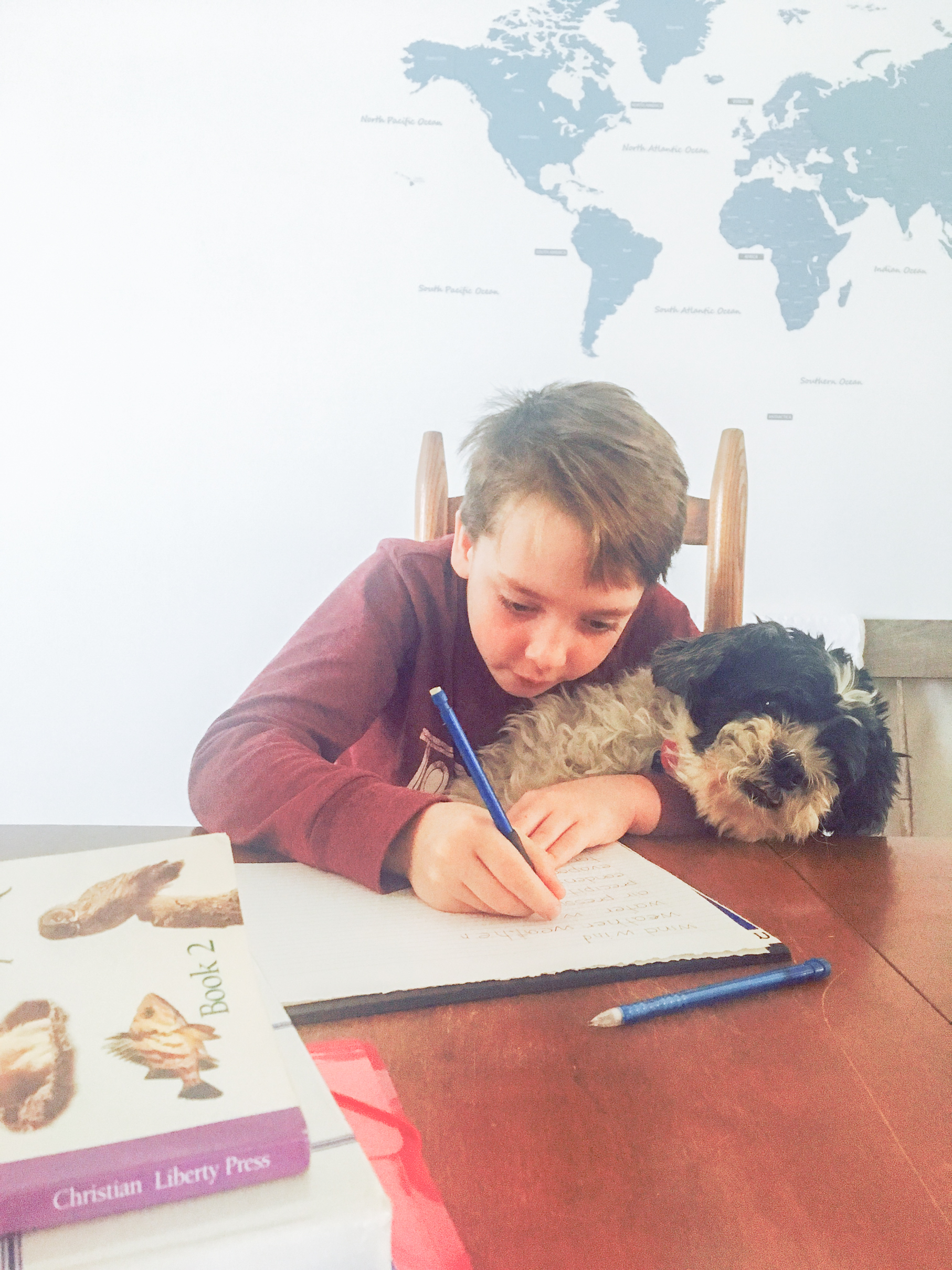 10 Things I learned after 17 years of homeschooling