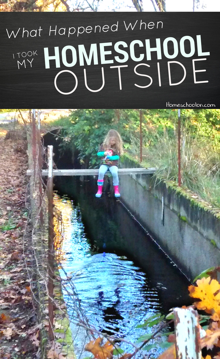 What happened when I took my homeschool outside: sometimes you just have to get outside. Whether it's forest school or unschooling, there are HUGE benefits to learning out of doors! Come check out my story!