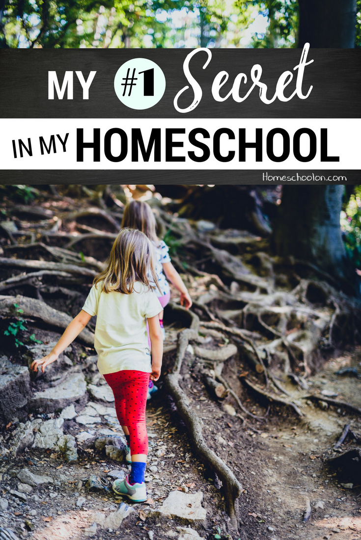 How do I homeschool 5 kids and manage everything in my life? The #1 secret in my homeschool day is probably not what you think!