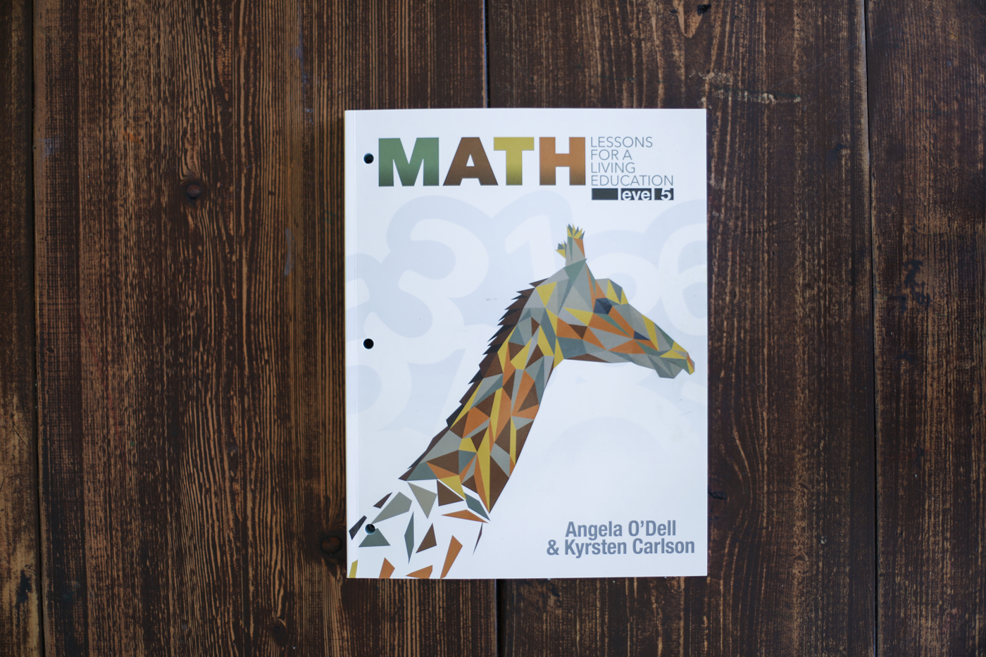 Homeschool Math comparison: Math Lessons for a Living Education