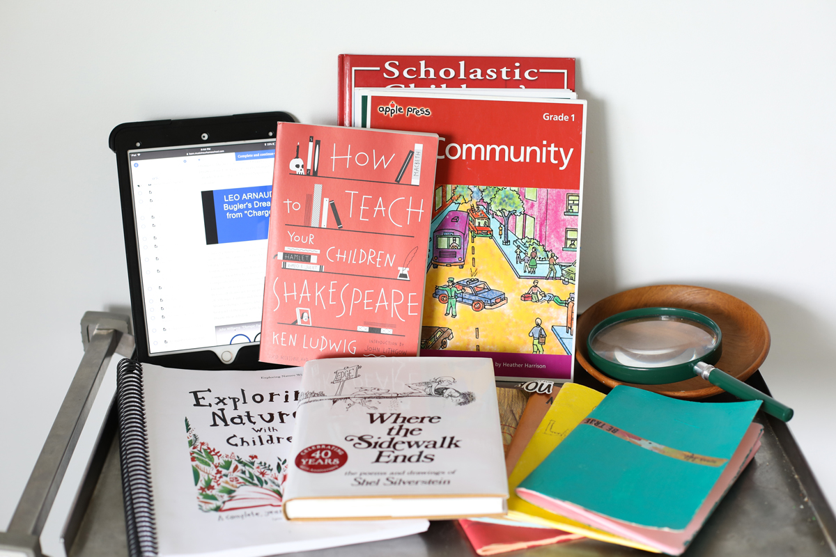 Homeschool Year in Review: What we are using for homeschool curriculum 2018-2019