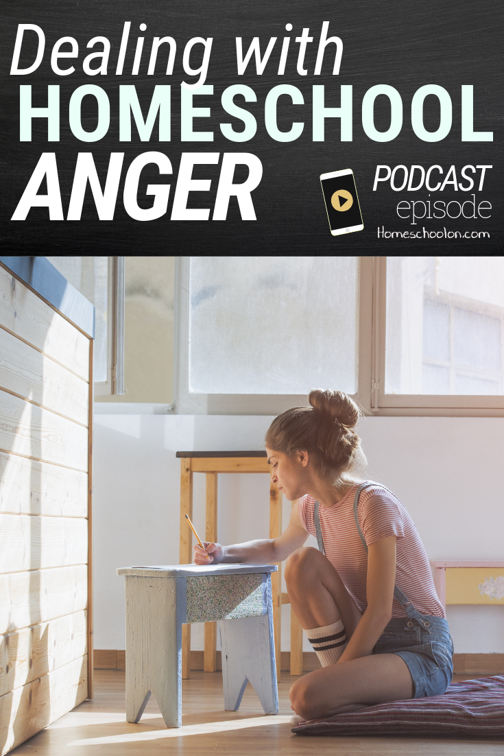 Dealing with Homeschool Anger when you are discouraged, impatient, yelling at your kids or feeling like you are failing. Learn some of the most common triggers of anger and some practical strategies and tools to help break the cycle! #homeschool #homeschooling